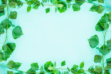 Green frame composed of fresh green popplar brances and leaves. Background and copy space image symbolizing ecology, nature, spring and freshness Standard-Bild