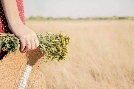 Woman with a bunch of flowers and a hat in the field. Rural scene: female in polka-dot dress with farmer hat and bouquet of flowers in her hand, retro styled faded colors Stock Photo