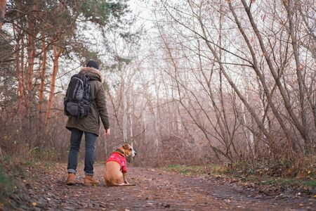 Active rest outdoors: male person with his dog hiking in the forest. Getting away from the city and technology concept: man and his pet enjoy the silence of the autumn nature Stock Photo