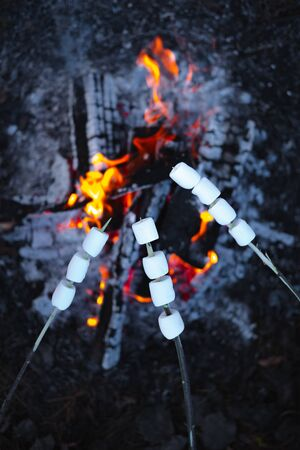 Roasting marshmallows by the campfire. Top view of zephyr pieces on sticks above the bonfire