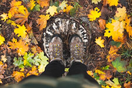 Person stands on a wood stub in the autumn forest, top view. Feet in waterproof trekking boots shot from above, a concept of hiking in bad weather, enjoying autumn season Reklamní fotografie