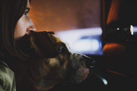 Portrait of a young woman hugging her dog in the backseat of a car in the night light. The concept of friendship between human and his pet