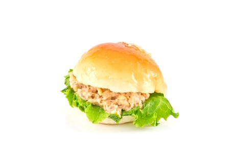 Fresh burger with tuna 版權商用圖片 - 10977928