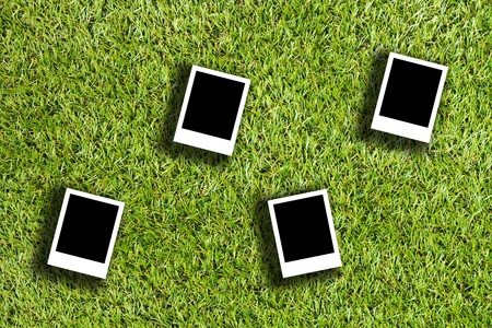 blank photo on artificial grass field landscape  photo