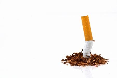 Cigarette butt  Stok Fotoğraf