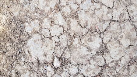 Dry soil, wasteland brown background