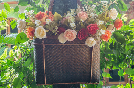 Flowers in the garden planted in a basket photo