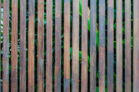flaking: Wooden Palisade . Close up of grey and green wooden fence panels. wood fence