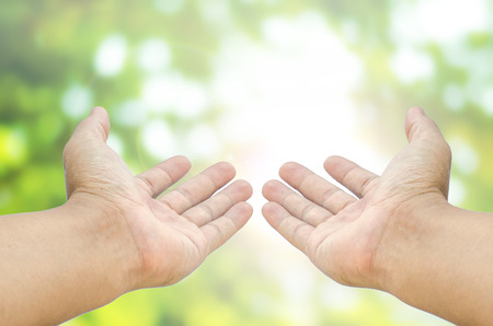 open two hand on blurred abstract nature background