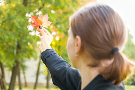 Autumn golden orange and red maple leaves in woman hand