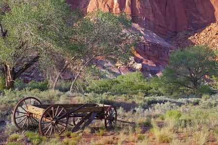 牧場の古い木製ワゴン