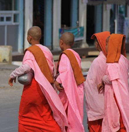 nuns: Buddhist nuns in Myanmar Feb 2015 No model release Editorial use only