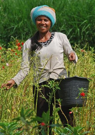 若い女性農業バリで 2011 年 3 月 3 日ないモデル リリース エディトリアル使用のみ