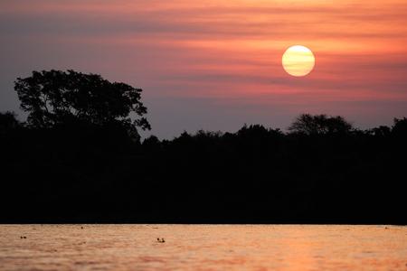 Beautiful sunset in northern Pantanal, world`s largest marsh
