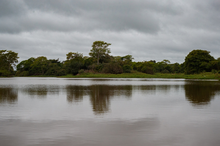 Beautiful landscape in northern Pantanal Stock Photo
