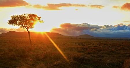 Amazing sunrise in African Congo