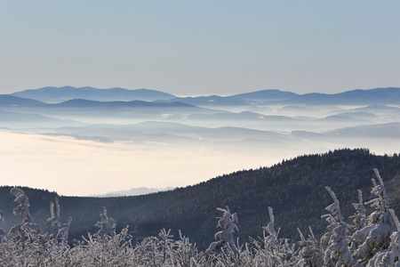 View of a winter forest mountains in Czech Republic
