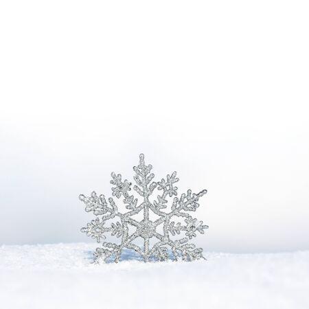 beautiful winter wallpaper photo