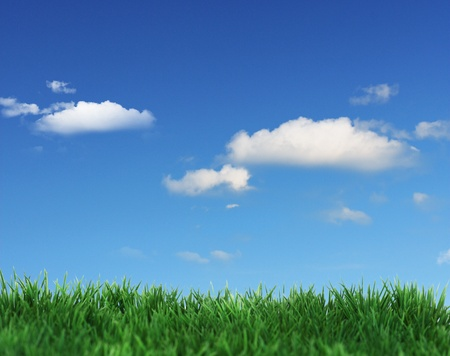 Green field and blue clouds  photo