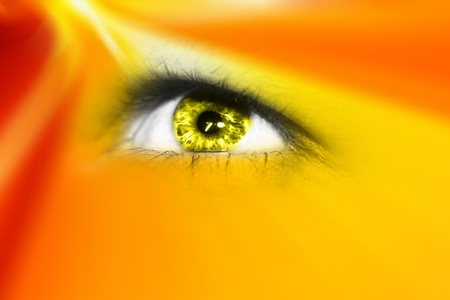Digital eye in a future vision  photo