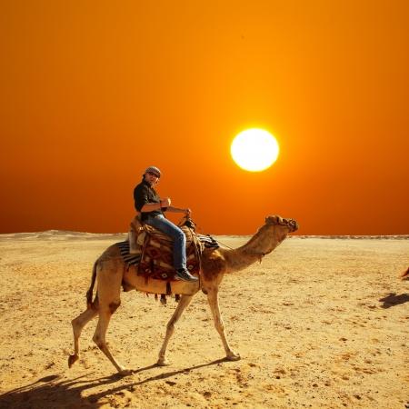 camello: en las vacaciones de verano en un paseo en camello