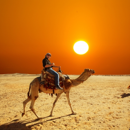 sahara: in the summer holiday on a camel ride Stock Photo