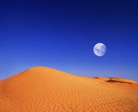 beautiful day in the dunes of Africa Standard-Bild