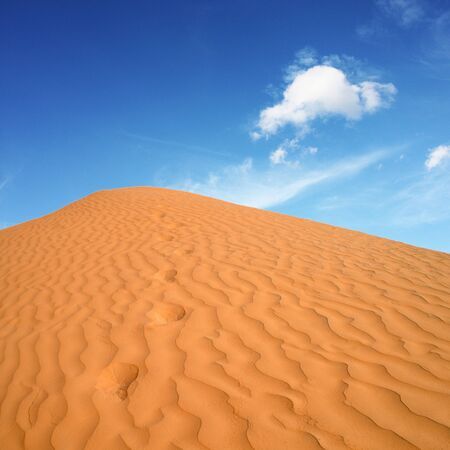 beautiful day in the dunes of Africa Stock Photo - 14273141