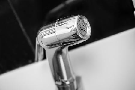 bidet: Bidet shower, bidet spray, bidet sprayer or health faucet.