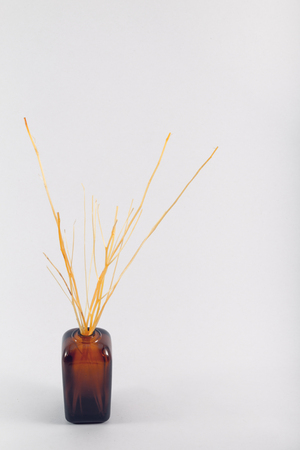 air diffuser: Home Fragrance ,Air Fresheners or Essential Oil Reed Diffuser.