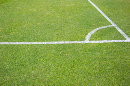 conner: conner grass field,football or soccer game
