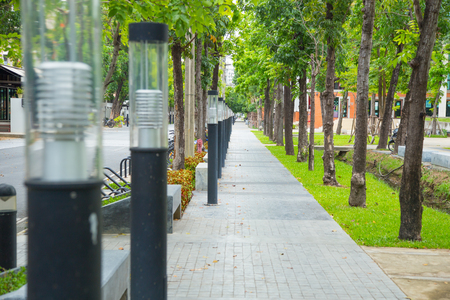 mersey: light pole with footpath with in university campus or public park.;