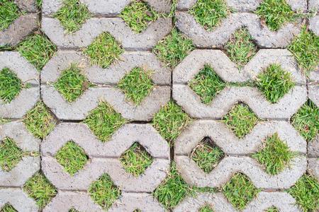 Gehweg Block mit grünem Gras in Textur Hintergrundmuster