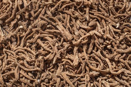 dried herbal Ginseng, Angelica sinensis Diels. or Livisticum officnale Koch.