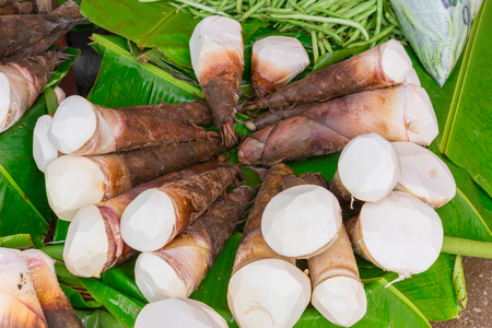 Bamboo shoots or bamboo sprouts High in Uric Acid danger from. Stock Photo