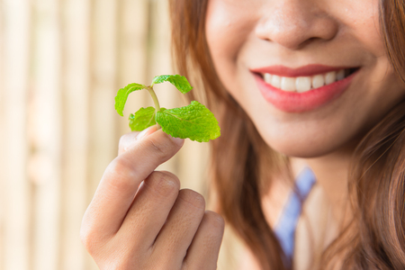 Eating Mint leaves for good dental health and fresh breath Stockfoto