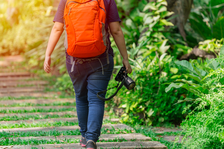 Nature photographer walking with camera gear in the park to find insect subject and explorer