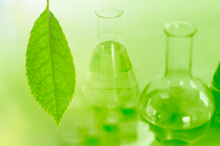 Science and bio-technology of green nature herbal extraction in the laboratory for a background.