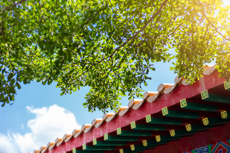Asan chinese style building with green tree clean air fresh blue sky. china eco sustainable city concept.