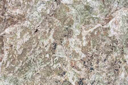 nature of sea grunge stone rock with lichens texture for background. Stock Photo