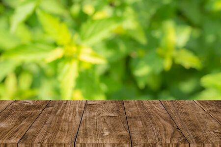 green nature blur with wooden table background for natural products montage template Stock Photo