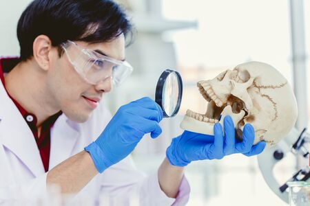 Scientist Physical anthropology in biological science lab studying human bone looking with Magnifying glass in skull to study mount and teeth age of ancient people Archivio Fotografico