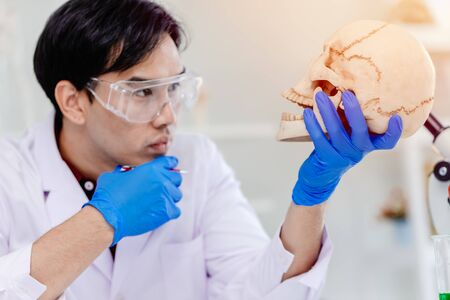 Scientist Physical anthropology in biological science lab studying human bone looking wonder at the skull to study age of ancient head Archivio Fotografico