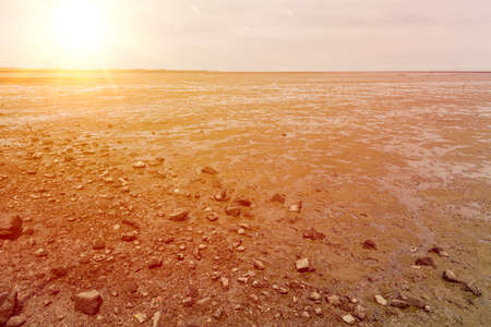 dry sea arid land effect from Spring tides with sunny sky 免版税图像