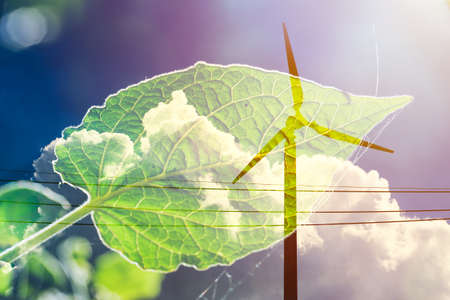 wind turbine on cloud sky overlay with green plant leaf for eco energy saving earth and environmental friendly power generator concept 免版税图像