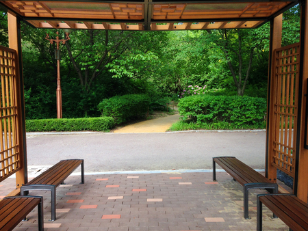 seating area: Seating area in the botanical garden