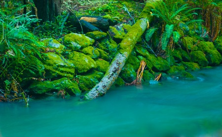 A lazy lagoon with a dream like look to it   版權商用圖片