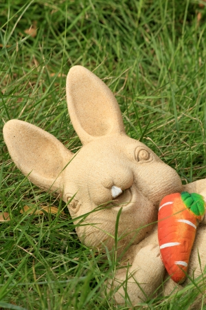 Bunny and carrot  photo