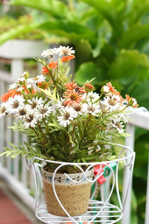 spurious: Flowerfake in pot