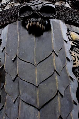 Skull metal photo